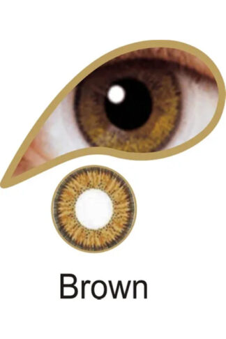 MesmerEyez 3 Month Contact Lenses - Brown
